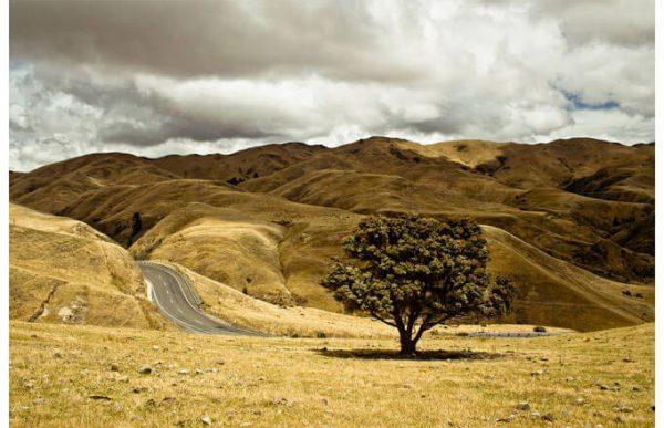 Фотообои Дорога в холмах