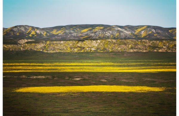 102011 Желтая гора