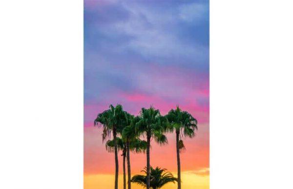 Фотообои Закат и пальмы
