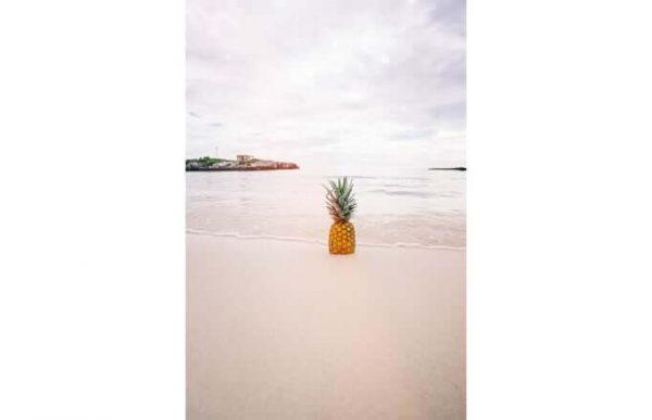 Фотообои Ананас на пляже