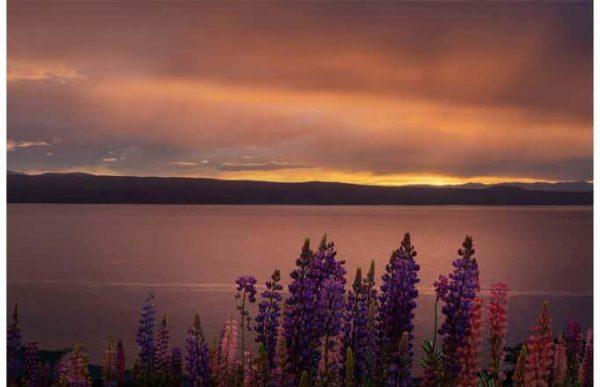 Фотообои Закат над озером