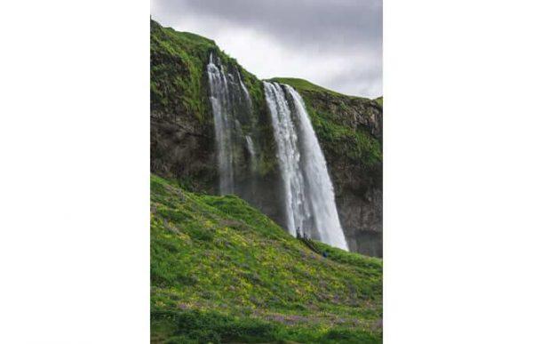 Фотообои Водопад и зелень