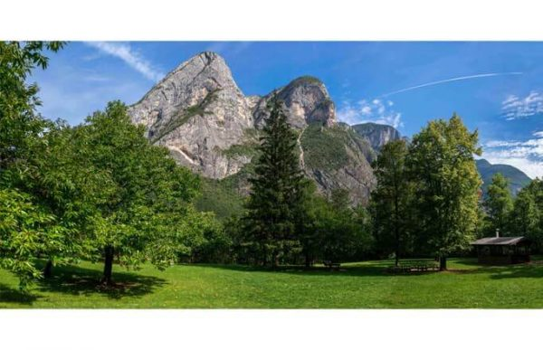 Фотообои Пик на фоне леса