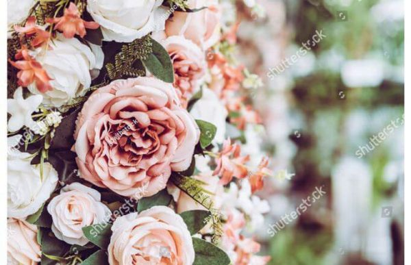 Фотообои Стена из роз