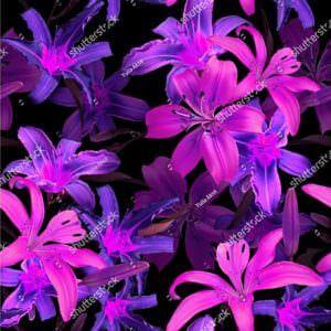 Фотообои Фиолетовые лотосы