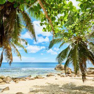 Фотообои Райский пляж