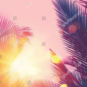 Фотообои Закат сквозь пальмы