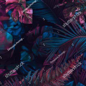 Фотообои Густая листва джунглей