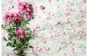 Фотообои Кустовые розы