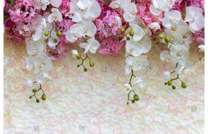 Фотообои Свисающая орхидея