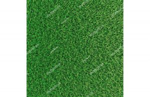 Фотообои Сочная газонная трава