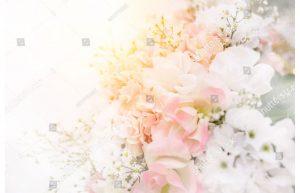 Фотообои Нежные цветы