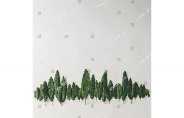 Фотообои Лес из листьев