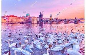Фотообои На перегу Влтавы. Прага