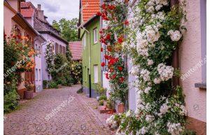 Фотообои Европейские домики