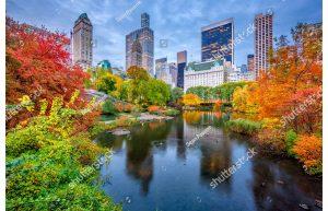 Фотообои Центральный парк