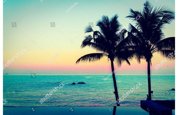 Фотообои Пальмы в лазурном закате