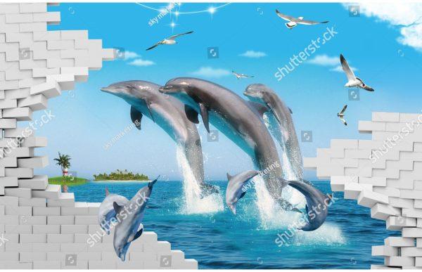 Фотообои Дельфины и чайки