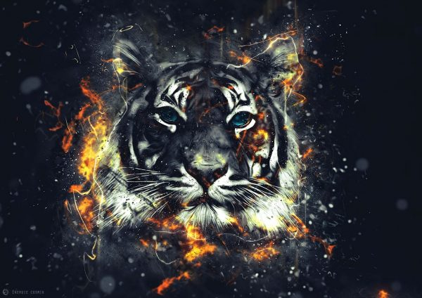 Фотообои Искрящийся тигр