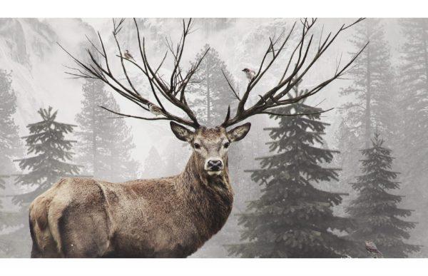 Фотообои Ветвистые рога