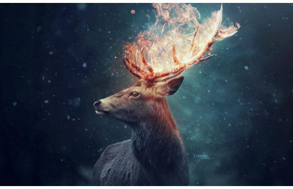 Фотообои Олень с рогами в пламени